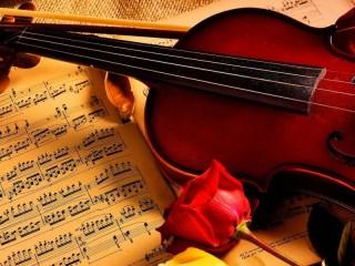 Собирать пазл Скрипка и роза онлайн
