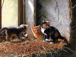 Собирать пазл Сладкие котята онлайн