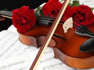 Собирать пазл Смычок и скрипка онлайн