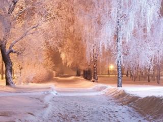Собирать пазл Снежная аллея онлайн