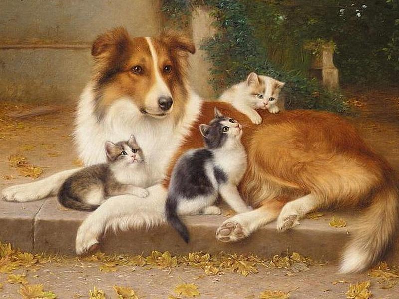 Пазл Собирать пазлы онлайн - Собака и котята