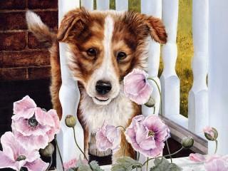 Собирать пазл Собака и маки онлайн