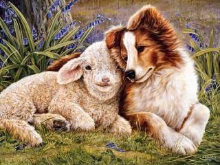 Собирать пазл Собака и овца онлайн
