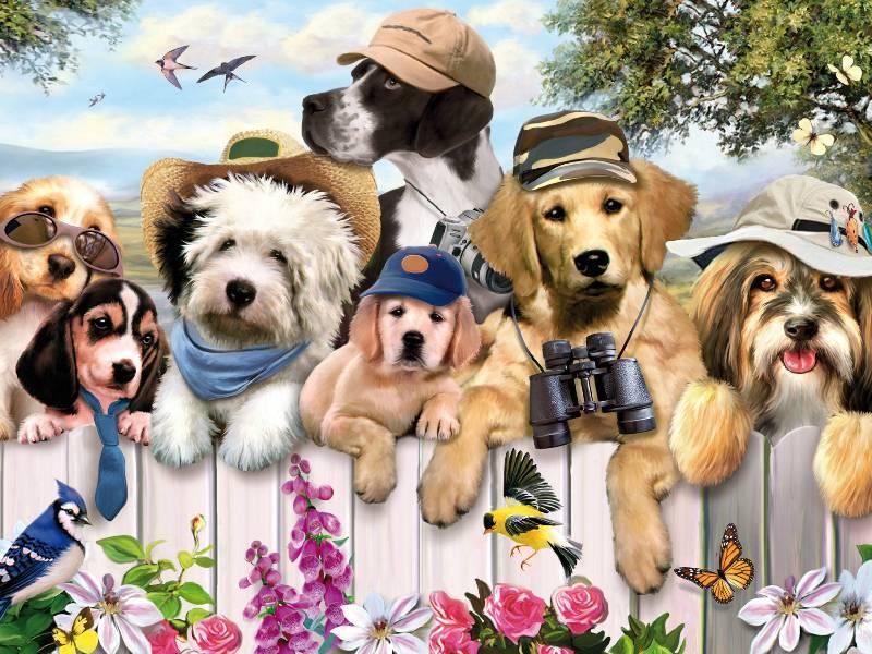 Пазл Собирать пазлы онлайн - Собаки 1
