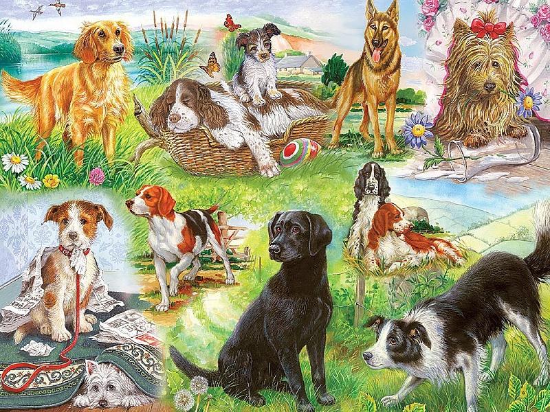 Пазл Собирать пазлы онлайн - Собаки коллаж