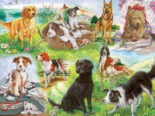 Собирать пазл Собаки коллаж онлайн
