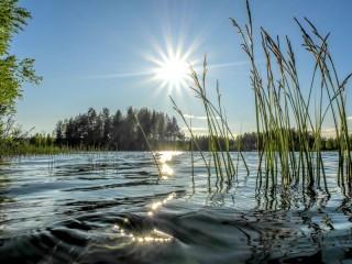 Собирать пазл Солнечная дорожка онлайн