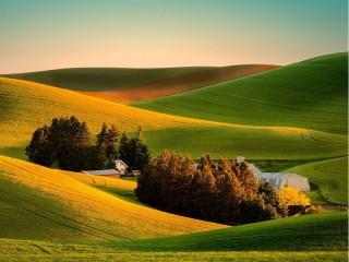 Собирать пазл Солнечная равнина онлайн