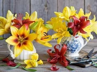Собирать пазл Солнечные лилии онлайн
