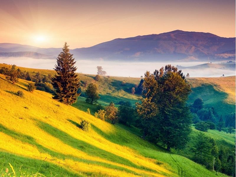Пазл Собирать пазлы онлайн - Солнечный холм