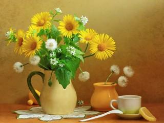 Собирать пазл Солнечный натюрморт онлайн