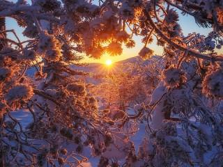 Собирать пазл Солнце за горой онлайн