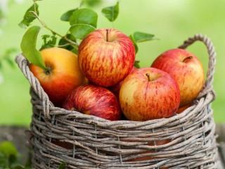Собирать пазл Спелые яблоки онлайн