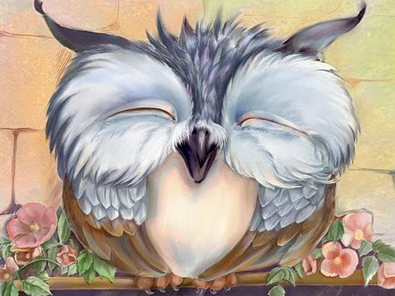 спящая сова картинки мультяшные известна структура