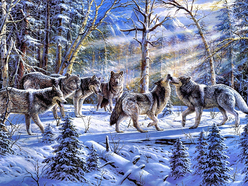 Пазл Собирать пазлы онлайн - Стая волков