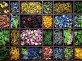 Собирать пазл Сушеные цветы онлайн