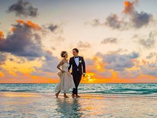 Собирать пазл Свадьба онлайн