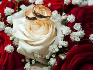 Собирать пазл Свадебный натюрморт онлайн