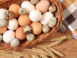 Собирать пазл Свежие яйца онлайн