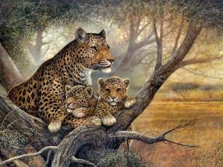 Собирать пазл Ягуары на отдыхе онлайн