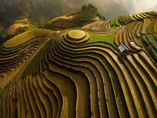 Собирать пазл Террасное земледелие онлайн
