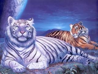 Собирать пазл Тигры онлайн