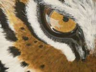 Собирать пазл Тигриный глаз онлайн