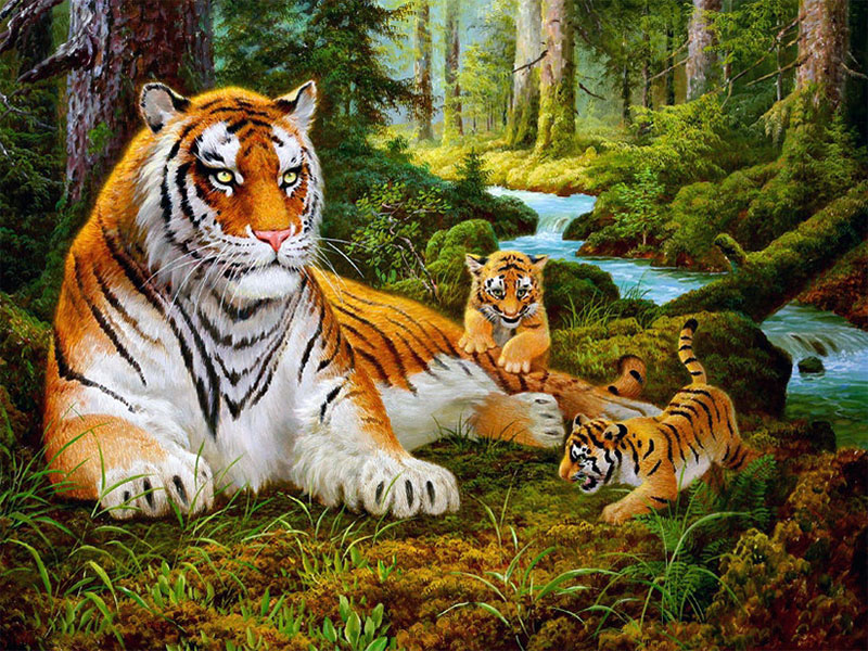 Пазл Собирать пазлы онлайн - Тигрица и детёныши