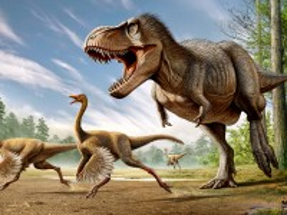 Собирать пазл Тиранозавр онлайн