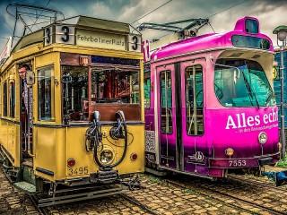 Собирать пазл Трамвайная парочка онлайн
