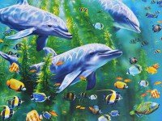 Собирать пазл Три дельфина онлайн