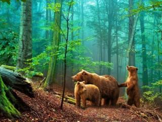 Собирать пазл Три медведя онлайн