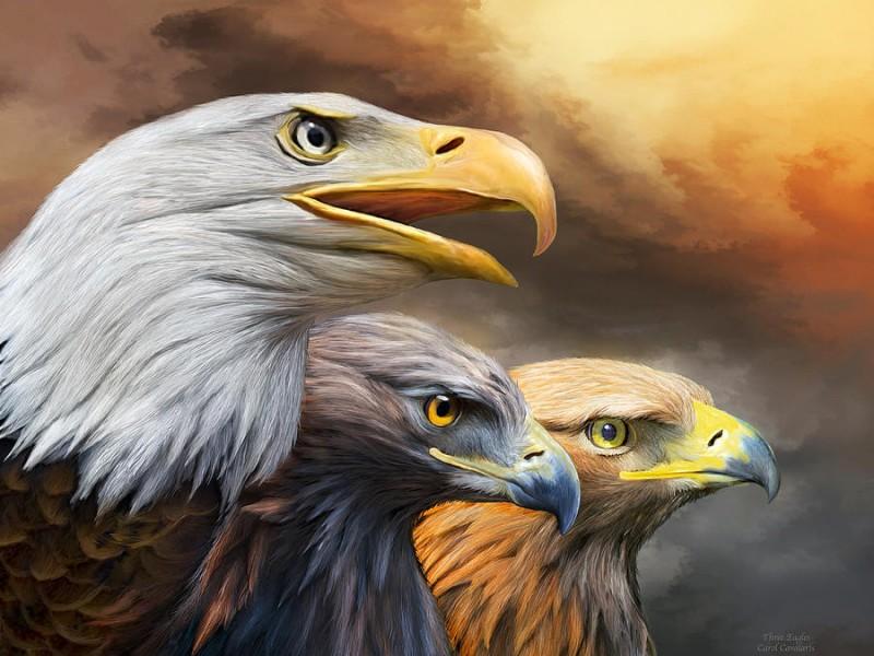 Пазл Собирать пазлы онлайн - Три орла