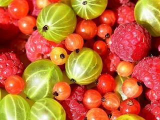 Собирать пазл Три вида ягод онлайн