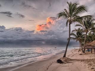 Собирать пазл Тропический остров онлайн