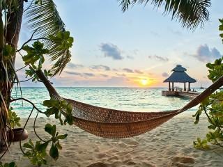 Собирать пазл Тропики онлайн