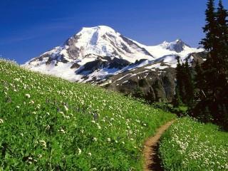 Собирать пазл Тропинка в горах онлайн
