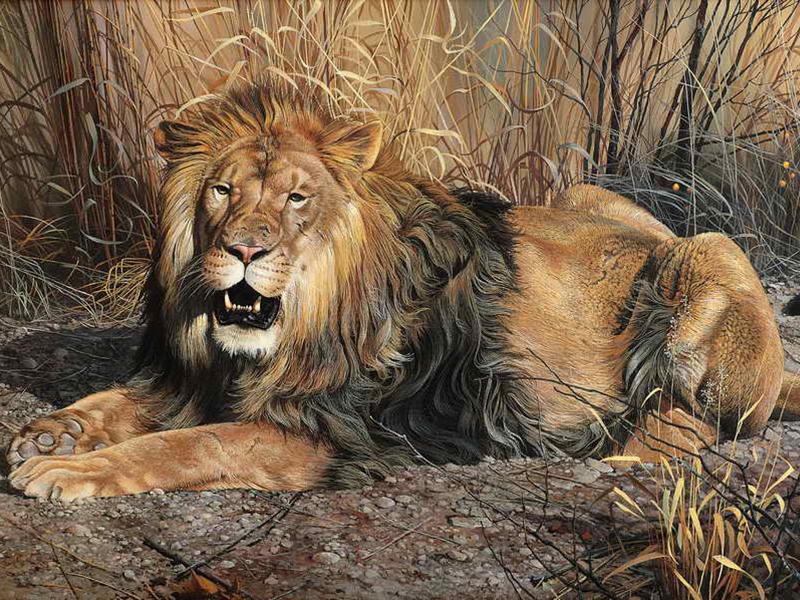 Пазл Собирать пазлы онлайн - Царь зверей