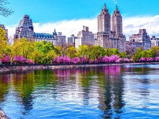 Собирать пазл Центральный парк онлайн
