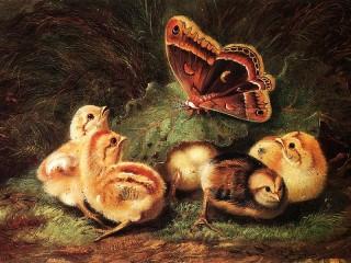 Собирать пазл Цыплята и бабочка онлайн