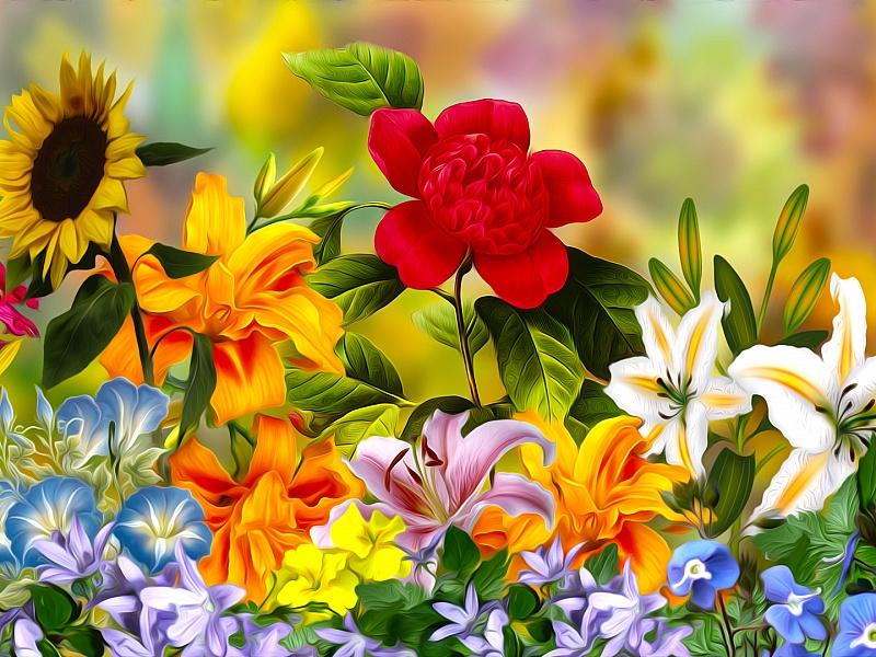 картинки для пазлов с цветами урожая