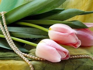 Собирать пазл Цветы и жемчуг онлайн