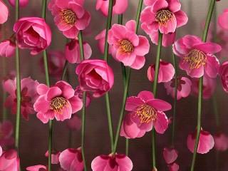 Собирать пазл Цветы на холсте онлайн