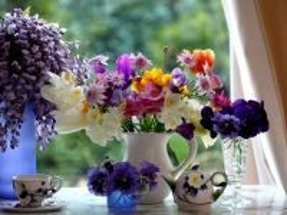 Собирать пазл Цветы на окне онлайн