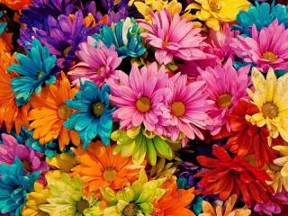 Собирать пазл Цветы в блёстках онлайн