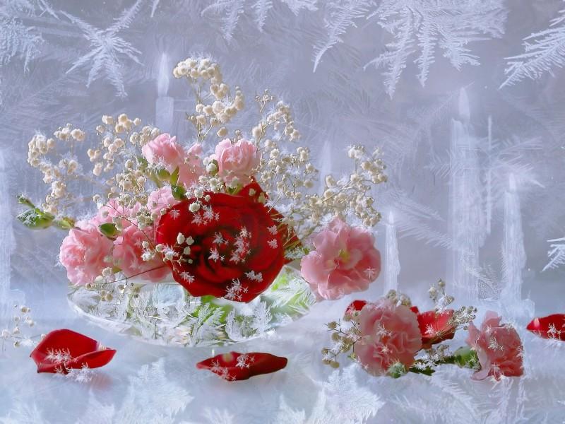 Пазл Собирать пазлы онлайн - Цветы за стеклом