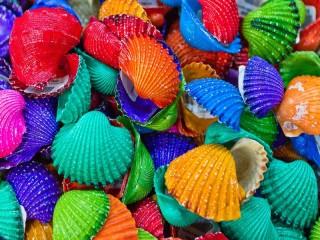 Собирать пазл Цветные ракушки онлайн