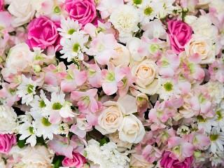 Собирать пазл Цветочный ковёр онлайн