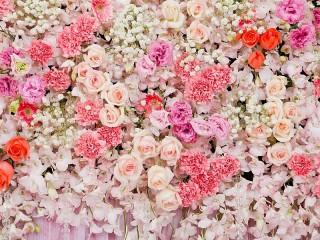 Собирать пазл Цветочный водопад онлайн