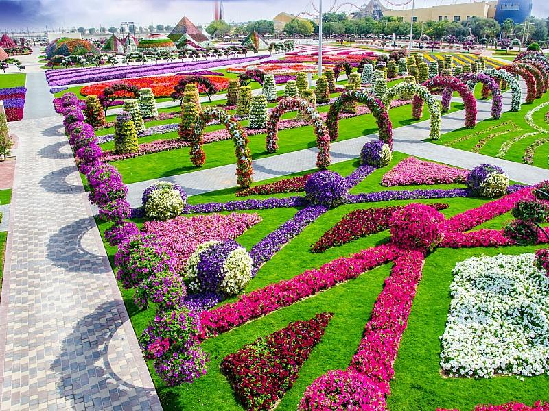 Пазл Собирать пазлы онлайн - Цветочный парк